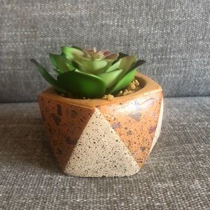 NWOT Anthropologie faux succulent